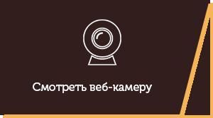 Смотреть вебкамеру Кирилловки на Федотовой косе
