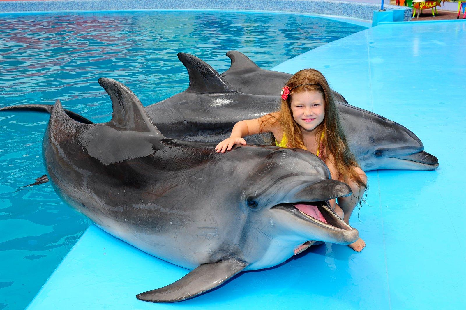 Дельфинарий в Кирилловке